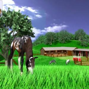 A Virtual Horse - Gra o Koniach