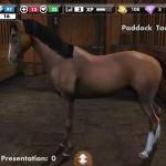 My Horse, aplikacja o koniach dostępna w sklepie