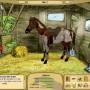 My horse farm - gra o koniach