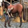 Riding Academy gra o koniach